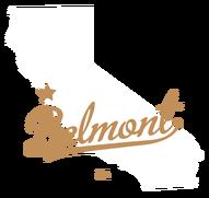 DUI Attorney belmont